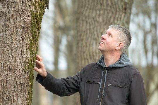 Ostame metsa! Kodanikuühendused tahavad ostetud maa muuta looduskaitsealaks