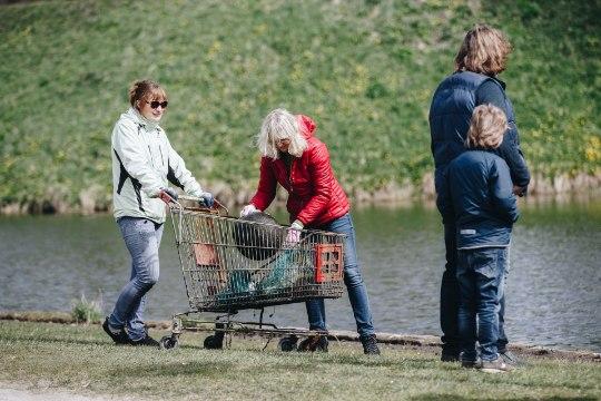 Juubeliaasta jätkub: ees on tammede istutamine, talgupäev ja suur suvenädal