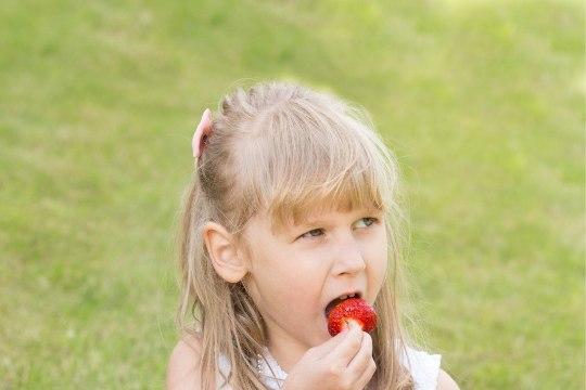 Laste ülekaal on võtmas epideemia mõõtmeid: ligi kolmandik Eesti lastest on ülekaalus või rasvunud