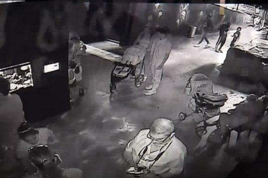 VIDEO   Texase akvaariumist varastati haikala