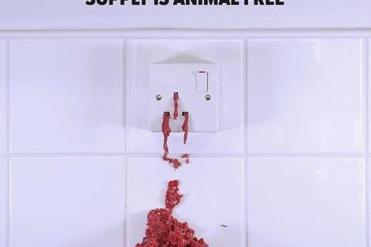 ESIMENE MAAILMAS! Briti firma müüb veganitele sobilikku elektrienergiat