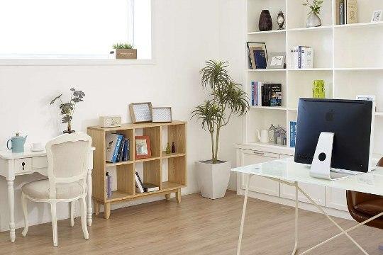 Riiulid – head kohad, kuhu paigutada rohked esemed oma kodus