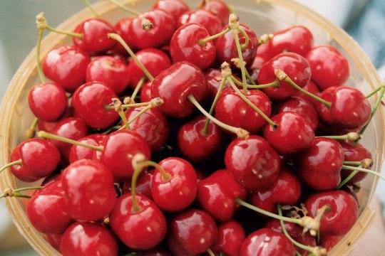 HOIDU MÜRGISEST SINIHAPPEST! Mida teha, et kirsikivid poleks ohtlikud?