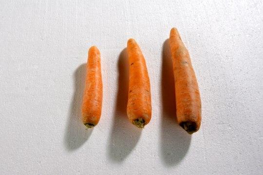 LUGEJAKIRI: miks veganid enda sööki nii väga loomse päritoluga toiduks maskeerivad?