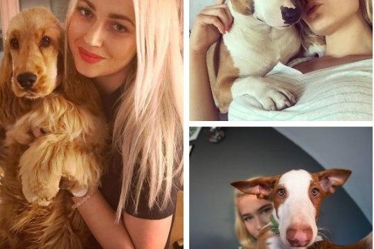 TOP 10 | Kümned tuhanded fännid Instagramis ehk Eesti kuulsamad lemmikloomad, kellel tasub silma peal hoida