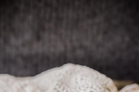 Pärnumaa parimad toidumeened on marjamaius ja jääsiider