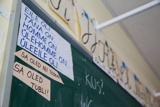 Keit Pentus-Rosimannus | Eesti keeles hakkama saamine peab olema elementaarne