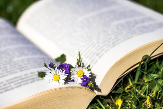 BLOGI | Seentest ja kirjandusest