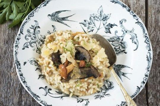 Toidutare uus nädalamenüü: kalorivaesed jamaitsvad seeneroad
