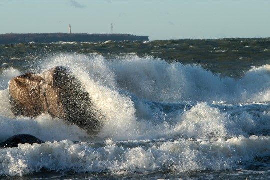 В Эстонии объявлено штормовое предупреждение: порывы ветра до 25 м/с