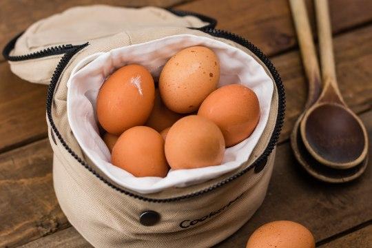 Vitamiinide sõnastik – kellele ja miks?