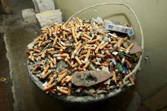 Küsimus | Miks kohtus võib suitsetada?