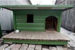 Haapsalus peeti kutsevõistlused koerakuudi ehitamises