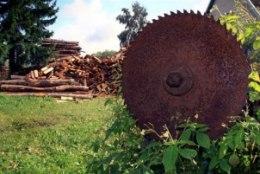 Küttepuud on Soomes kohati odavamad kui Eestis