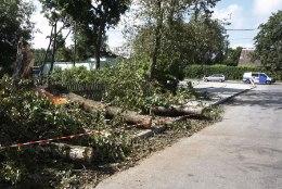Äikesetormid tegid Lõuna-Eestis palju pahandust