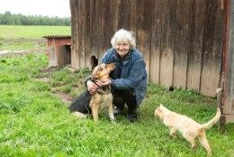 Neli koera kaotanud talumemm: rohkem ma võsavillemeid koertega toitma ei hakka!