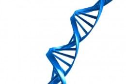 14% tserebraalparalüüsi juhtudest võib olla geenide süü