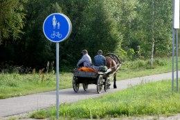 Vambola Paavo | Aktsiisitõus suretab maal autoliikluse