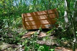 FOTOD   Maia karu hävitustöö - mesitarust jäid maha vaid pilpad