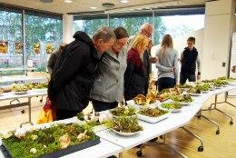 Seenenäitus Tartu loodusmajas kinnitab: tänavu on metsades puravikuuputus
