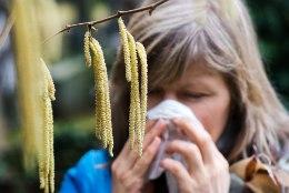 Kuidas ära tunda ja leevendada allergiaid?