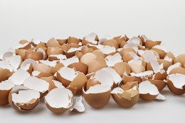Miks peaks oma tervise nimel munakoori sööma?