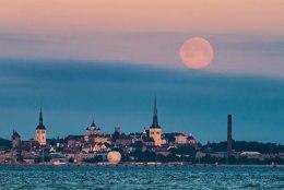 ÕHTULEHE GALERII | Loojuv kuu Tallinna kohal ehk Kuidas ilm pildistajaid ninapidi vedas