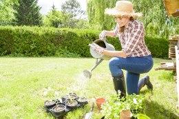Tarkuseterad algajale aiapidajale