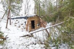 ÕHTULEHE VIDEO | 21. SAJANDI METSAVENNAD IX: miks vajab metsavend punkrit ja milline peaks see olema?