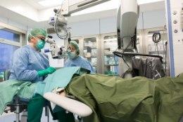 Silmaarst Artur Klett: Haruldaste haiguste võrgustikku kuulumine tagab patsientidele parema abi