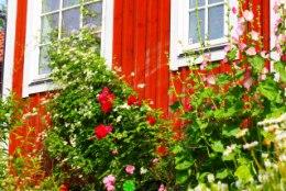 6 nõuannet, kuidas leida ideaalne maakodu