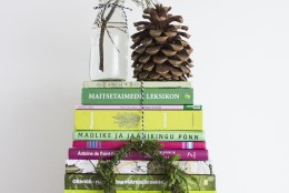 JÕULUD | Leia kõikjalt jõulurõõmu! Sassis kodu saab sekunditega jõulumeeleolu