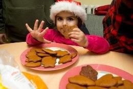 GALERII   Kuidas valmistuvad Vao küla pagulased jõuludeks?