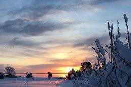 ÜLESKUTSE | Saada meile fotosid lume- ja lörtsisajust