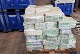 Banaanikonteinerist leiti 4500 kilogrammi kokaiini