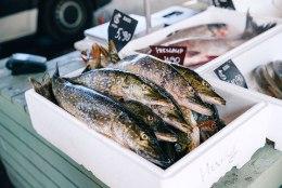 GALERII | Tallinna avatud kalasadamate päeval kaubeldi nii kala kui ka suhkruvatiga
