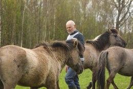 SUKSUKARJAGA JÄNNIS TALUMEES: mulle pakuti probleemi lahenduseks, et vii hobused Poola lihakombinaati!