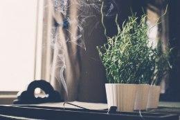 NIPID | Too koju hea energia
