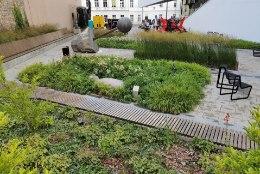 Põnev linnaaed: Vilniuses püüab pilke Mo kunstimuuseumi haljastus