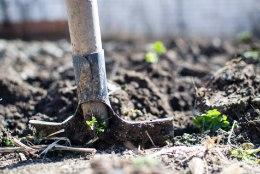 Saada aiatööriistad talvepuhkusele: millist hooldust need enne seda vajavad?
