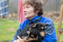 KOERTETA JÄÄNUD TALUPERENAINE: hunt võttis ühe koera otse koduhoovis meie silme all!