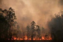 VIDEO | Ulatuslikud metsapõlengud ähvardavad Austraalia ralli vaid kahepäevaseks muuta