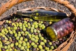 KUMMALINE JUHTUM: Kreetalt teele pandud kvaliteetse oliiviõli asemel jõudis Eestisse odav sojaõli