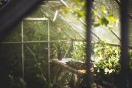 Tee kasvuhoone kevadeks korda!