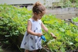TARK VANEM | Nipid, kuidas saada laps koristama ja muid kodutöid tegema