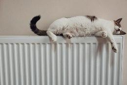 Kellele kuuluvad korteri radiaatorid ja miks neid ei tohi ise vahetada?