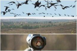 Kõrvemaa kaitsealal keelustatakse linnujaht aastaringselt, jahimehed pole sellega nõus