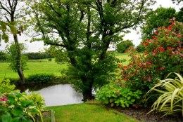 HAKKA PLAANIMA! Häid soovitusi, kuidas ise oma aeda kujundada
