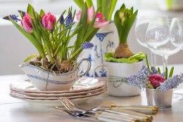 Hea nipp, kuidas tuua tuppa kevadet ise kodust lahkumata