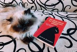 LUGEMISSOOVITUS | Morbiidne, ent humoorikas raamat, millest selgub, kas kassid ikkagi söövad surnud omanike silmamune või mitte